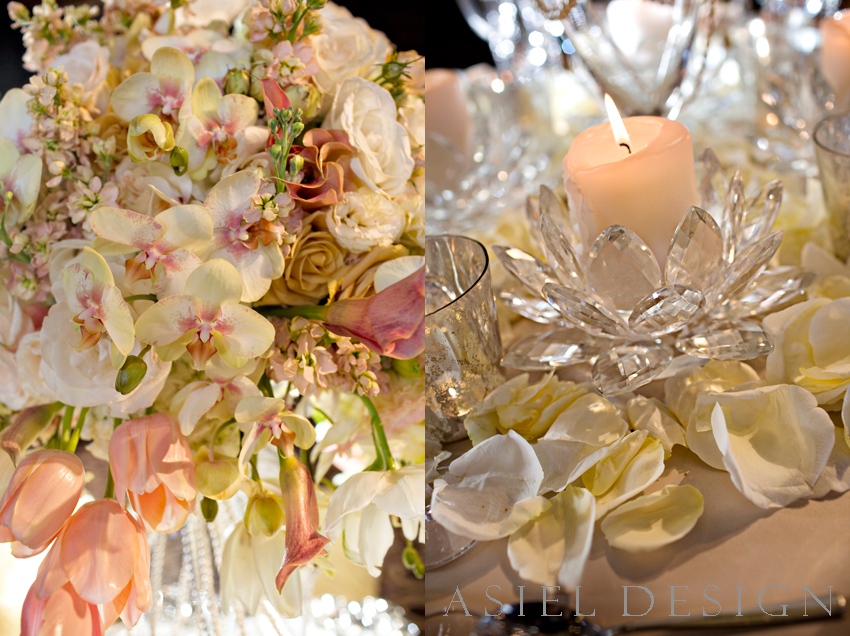 julia morgan ballroom | DRIPPING PEARLS