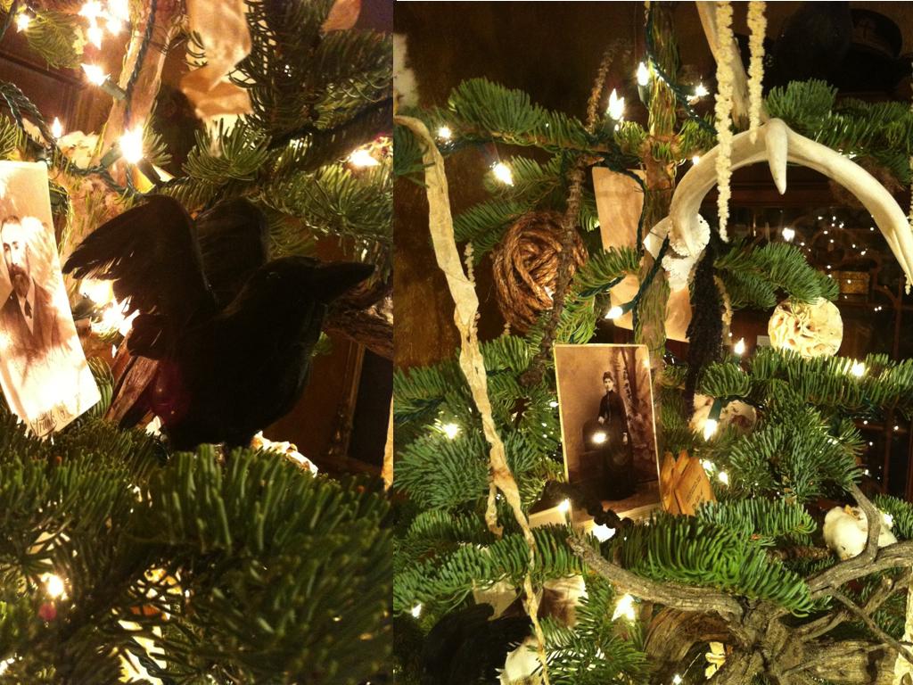 gothic tree blog 6