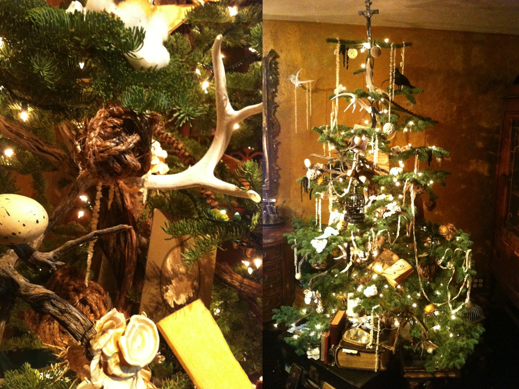 gothic tree blog 9