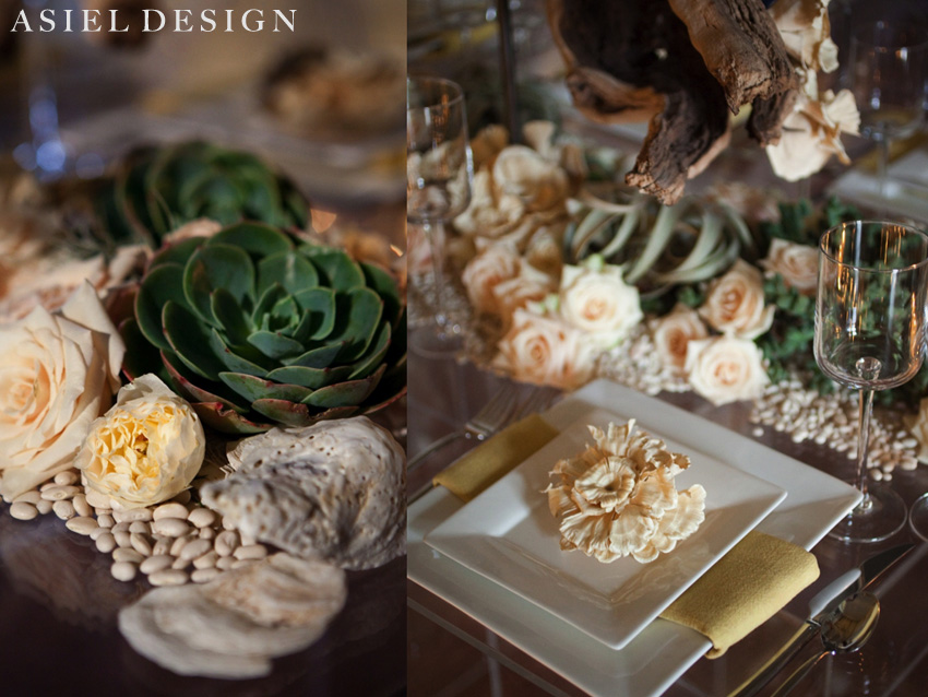 residential & sustainable  |  GRACE ORMONDE PHOTO SHOOT.006