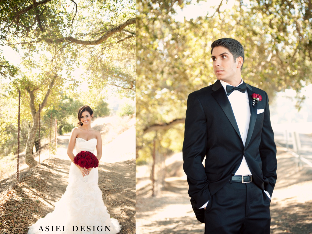 gothic n' glamour  |  MOUNTAIN WINERY.003