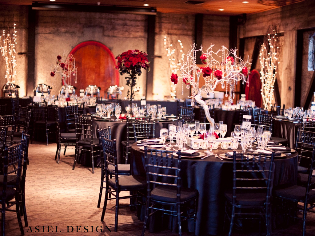 gothic n' glamour  |  MOUNTAIN WINERY.011