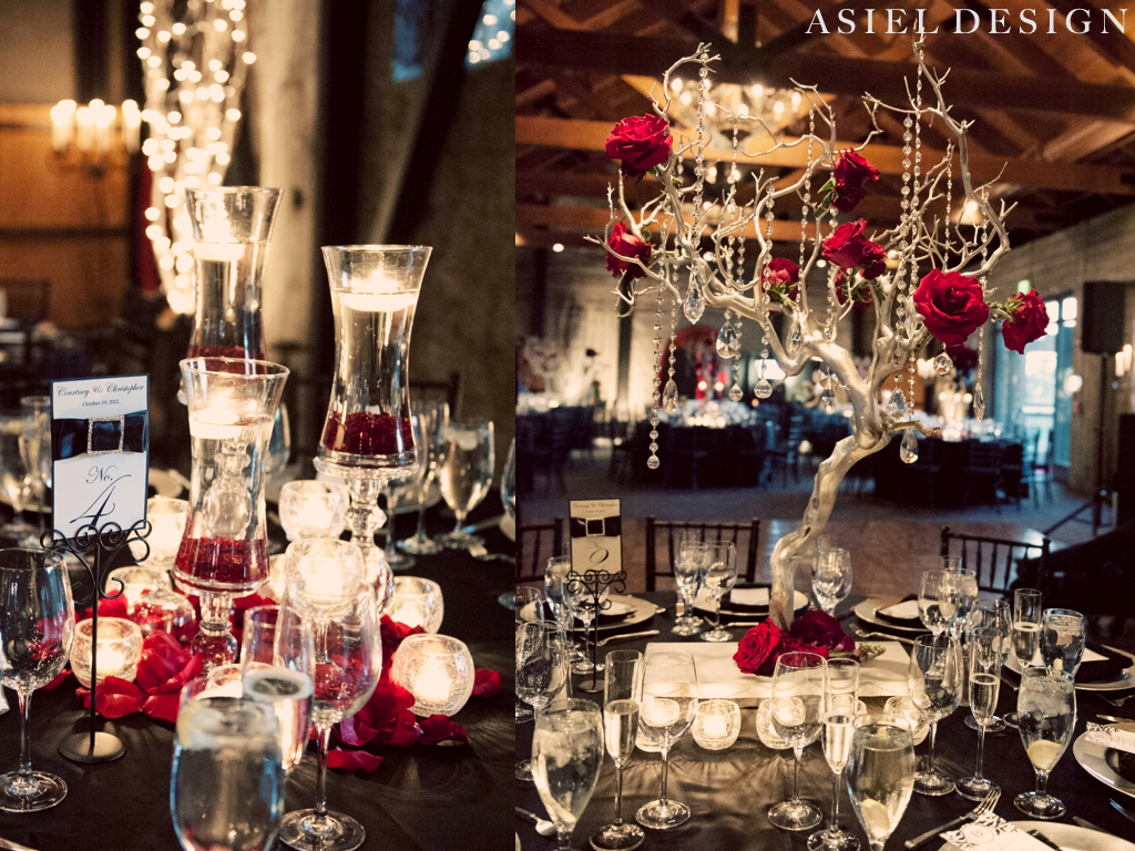 gothic n' glamour  |  MOUNTAIN WINERY.013