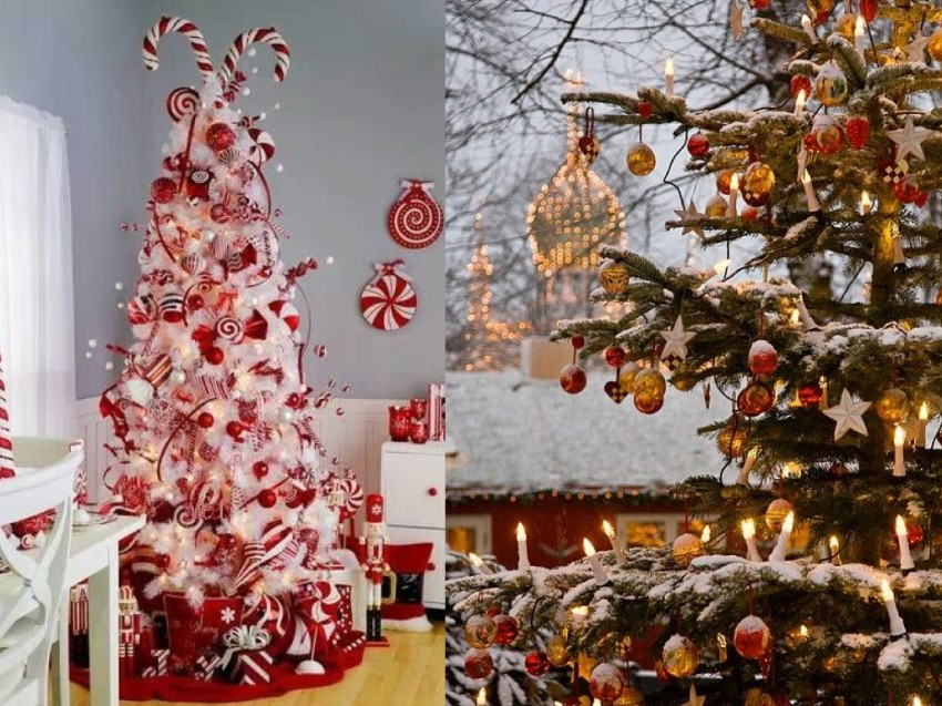 orgins of christmas trees.003
