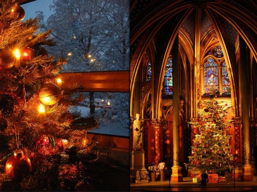 orgins of christmas trees.006