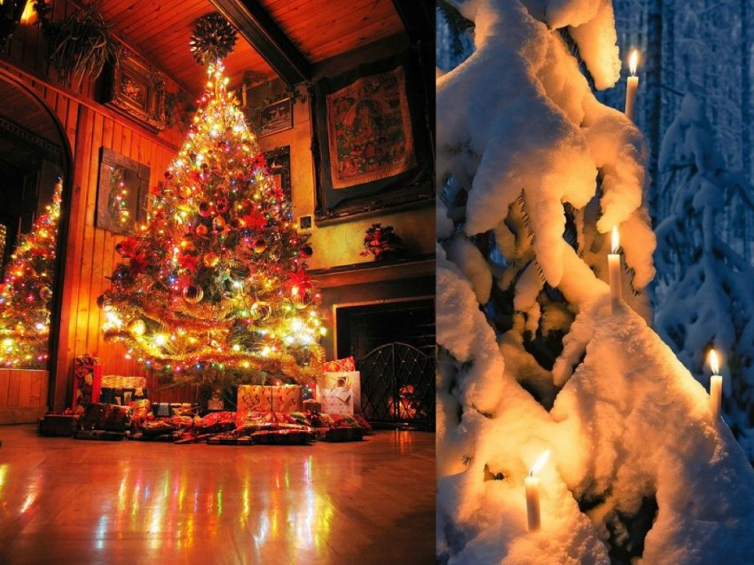 orgins of christmas trees.010