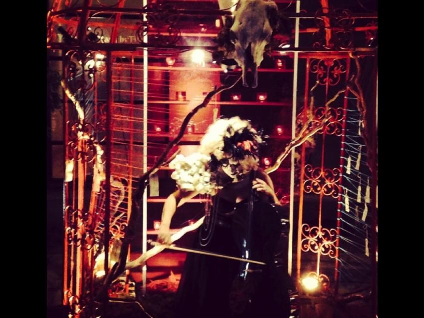 subzero bird in a cage.001