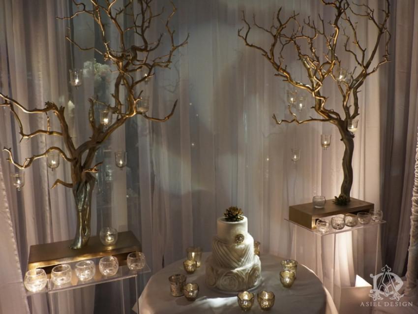 Santa Clara Bridal show.009 copy