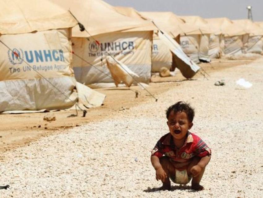 refugee.008